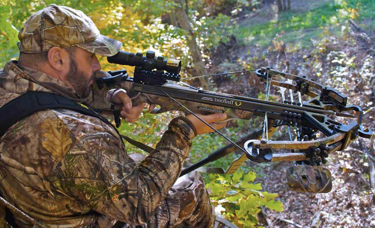 10 Best Crossbows for the Money